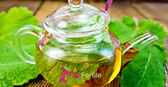 Fertility Tea: The Common Herbs
