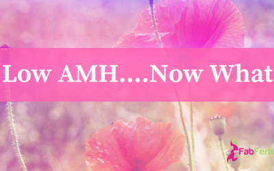 Low AMH…what does it mean for your fertility?