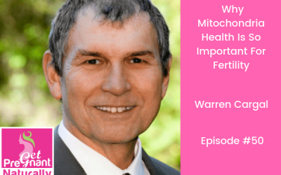 Why Mitochondria Health Is So Important For Fertility