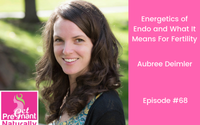 The Energetics of Endo and What it Means for Fertility