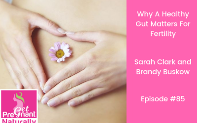 Why A Healthy Gut Matters For Fertility